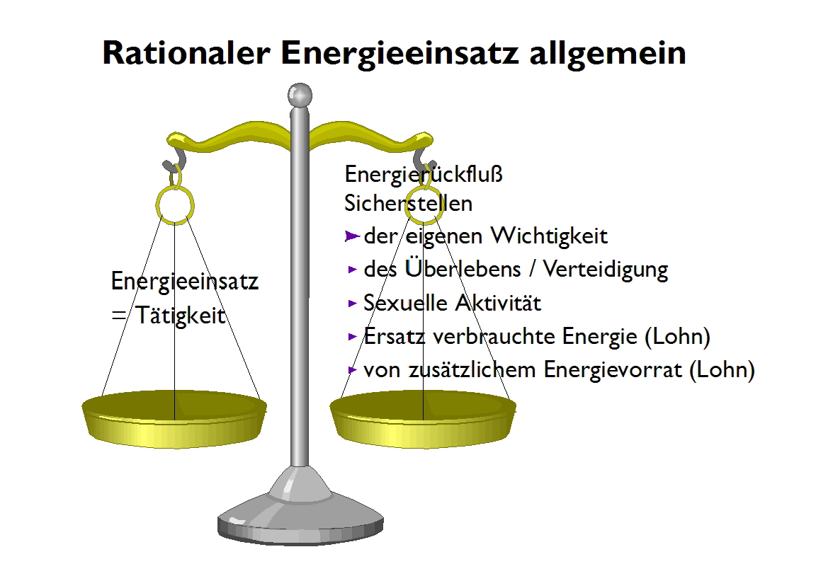 Rationaler Energieeinsatz.